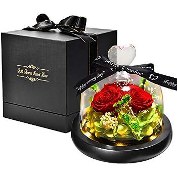 rosen te amo konservierte ewige rote rose in der kugel vase blumenstrau im glas mit liebe. Black Bedroom Furniture Sets. Home Design Ideas