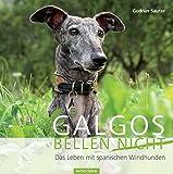 Galgos bellen nicht: Das Leben mit den spanischen Windhunden