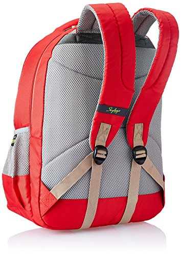 Skybags-Ltrs-Red-Laptop-Backpack-LPBPVI3ERED