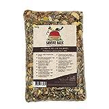 Perfetto Mix di Cibo Alimento per Scoiattoli con Semi e Noci Deluxe, Confezione da 900g, SeedzBox Mangime Squirrel Chipmunk Food