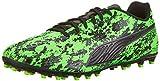 Puma One 19.4 MG, Zapatillas de Fútbol para Hombre, Verde (Green Gecko Black-Charcoal Gray), 43 EU