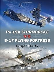 Fw 190 Sturmbock vs B-17 (Duel)