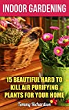 #10: Indoor Gardening: 15 Beautiful Hard To Kill Air Purifying Plants For Your Home