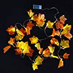 Aboat, ghirlanda decorativa con foglie autunnali, 2,5 m, con 20 luci bianche calde da usare come decorazione o regalo di Natale