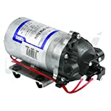 Pompe SHURFLO® 8000-541-236