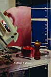 Collage Culture: Readymades, Meaning, and the Age of Consumption (Postmodern Studies, Band 49) - David Banash