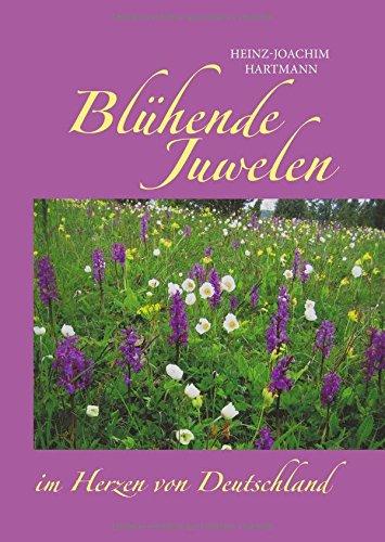 bluhende-juwelen-im-herzen-von-deutschland-botanische-exkursionen-im-jahreslauf