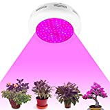 ATOPSUN 900W UFO LED Plant Grow Light Double Chips for Herb Growing Flower Blooming Indoor Greenhouse Lamp Hydroponic System[Energy Class A+++]