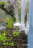 Pollen Glas CO2 Diffusor für Aquarienpflanze (Φ20mm)