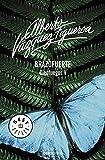 Brazofuerte/ Strong Arm: Cienfuegos V/Hundred Fires V by Alberto Vazquez-Figueroa(2007-04-30)