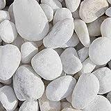 Marmor Weiss Zierkies, schöner Marmorkies in weiß mit der Körnung 25-40mm, Ideal zur Dekoration in Ziergärten, Parkanlagen oder Gehwegen, Zierkies für den Garten, 20 kg Sack (Mindestbestellmenge 15 Stück), Kieselsteine, Marmorkies weiß