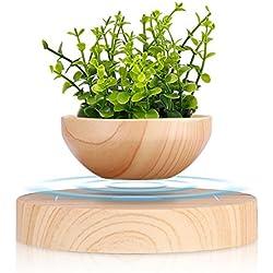 Zerodis Levitating Holz Air Blume Bonsai Topf Magnetschwebebahn LED schwimmende Pflanze Blumentopf für Zuhause Büro Desktop Dekoration Geschenk zum Geburtstag Muttertag EU Stecker