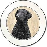 Curly Coat Retriever Hund AutovignetteGenehmigungsinhaber Geschenk