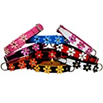 """ZOOLESZCZ LEATHER DOG COLLAR FLOWER Designer DAISY COLOUR PADDED Handmade RED with BLACK lining and WHITE FLOWER (10"""" 1.2cm wide/ 25cm long) 10"""