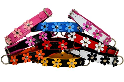"""ZOOLESZCZ LEATHER DOG COLLAR FLOWER Designer DAISY COLOUR PADDED Handmade RED with BLACK lining and WHITE FLOWER (10"""" 1.2cm wide/ 25cm long) 5"""