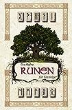 Runen für Einsteiger: Set mit Buch und Holzrunen (germanisches Runen Orakel, sofort loslegen)