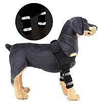 LNDDP Reflective Dog Shoulder Brace Front Leg Brace Canine Elbow Protector Hock Joint Wrap Arthritis Helps Wounds Healing Prevents Injuries Sprains,Black,L