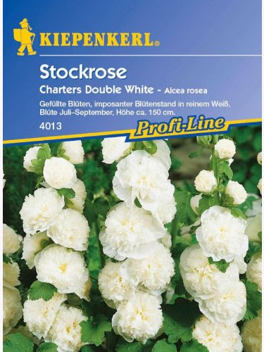 Stockrose Chaters Doppelte