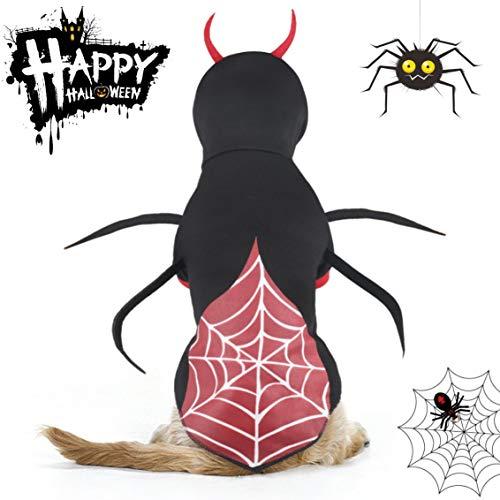 Putzt Halloween Kostüm Sich - Idepet Haustier Hund Halloween Spinne Kostüm Katzen putzt Sich Haustier Kleidung Anzug für Welpen kleine mittlere Hunde Chihuahua Teddy Mops Weihnachtsfeier Halloween Kostüme Outfit (L)
