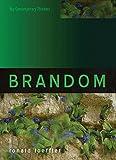 Brandom (Key Contemporary Thinkers) (English Edition)