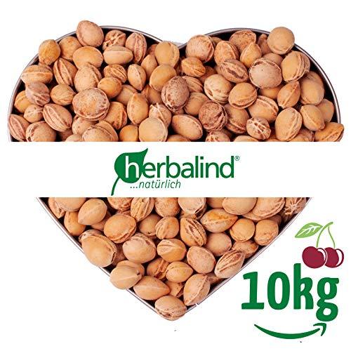 Herbalind, confezione da 10 kg di noccioli di ciliegia in qualità premium per imbottitura cuscino termico, delicatamente puliti senza prodotti chimici