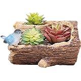 Amgker Resina Creativa Succulente Giardino in Vaso Creativo Realismo Imitazione Legno Texture Contenitore di Fiori succulenti Balcone Giardino Ornamenti da Tavolo Ceppo (Color : Style-A)