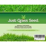1 kg de Graine d'Herbe de Qualité Premium couvre 35 m² - Graine de Gazon à Croissance Rapide et Résistante à l'Usure - Niveau de Tolérance à l'Eau Exceptionnel - 43 % de Ray-grass, 40 % de Fétuque rouge 12 % de Fétuque Rouge Gazonnante et 5 % d'Agrostide de qualité - Garantie de Remboursement à 100 % de GBW Capital
