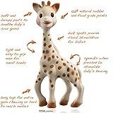 Sophie The Giraffe in Fresh Touch Gift Box Bild 3