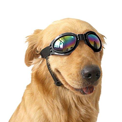 Angker Hund Brillen, PET Brillen, zusammenklappbare Pet Dog Sonnenbrille UV-Schutz Brille winddicht Brillen Pet Hund (schwarz)