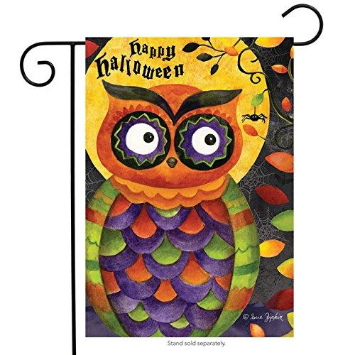 SPOOKY Eule Halloween Garten Flagge Primitiv Urlaub 31,8x 45,7cm Briarwood Lane