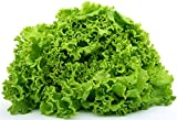 Best Lettuces - LIVE GREEN Lettuce Green Organic F1 Hybrid Seeds Review
