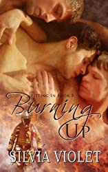 Burning Up (Volume 3) by Silvia Violet (2015-02-16)