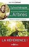 Sylvothérapie - Le pouvoir énergétique des arbres