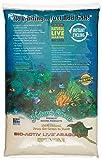 Bio - active 'live' Aragonite Natural White Xtreme Fine Reef Sand 20lb (2pc)