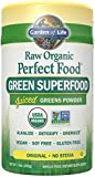 Garden of Life Perfect Food Raw Green Super Food (240g, Vegan, Dairy Free, Natural)