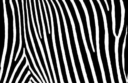 P161201–9FLEECE-WALLPAPER NEGRO Y BLANCO CEBRA GRANDE