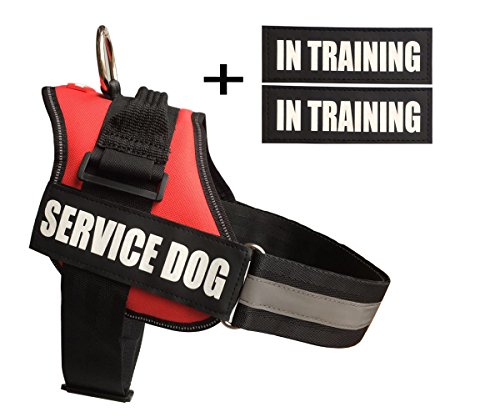 fairwin-service-dog-harness-vest-k9-no-pull-adjustable-with-reflective-service-dog-patches-m-fits-gi