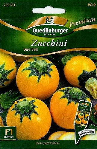 Zucchini, One Ball F1