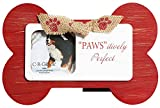 """Best CR Gibson Cadres photo - C.R. Gibson Santa Paws table-Cadre Photo """"Paws'itively Parfait Review"""