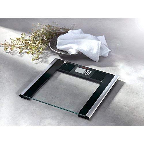 Soehnle Solar Sense, LCD, Negro, Plata, Transparente