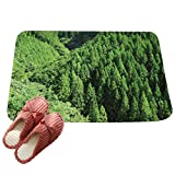 LvRaoo Dekorativ Fußabtreter Weich Schmutzfangmatte Fußmatte Türmatte für Badezimmer Küche Schlafzimmer - Baum Drucke (# 4, 60*40cm)