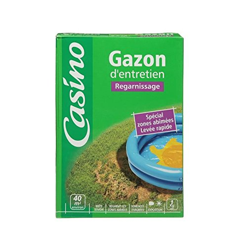 Gazon regarnissage - 1kg