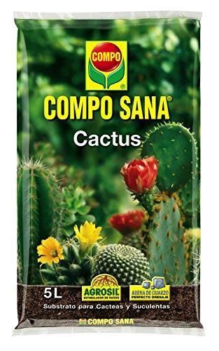 Compo Sana Cactus 5 L, 37x23x5.5 cm