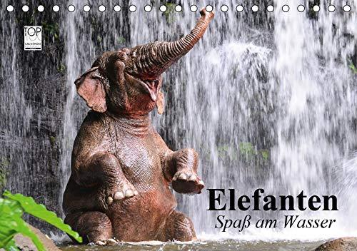 Elefanten. Spaß am Wasser (Tischkalender 2020 DIN A5 quer): Elefanten Babys beim...