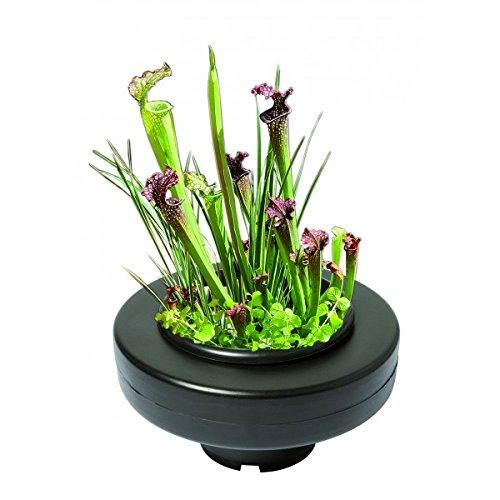 panier-flottant-23-cm-de-diamtre-pour-plantes-de-bassins-de-jardin-et-tangs