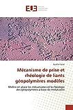Mécanisme de prise et rhéologie de liants géopolymères modèles