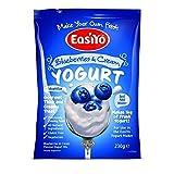 Easiyo Heidelbeeren & Cream Premium-Joghurt-Mix 230g