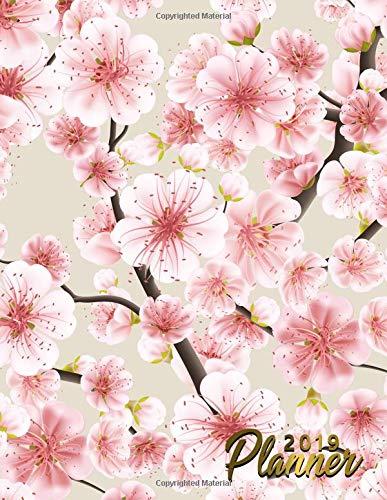623e5617de4 Japanese crafts sakura il miglior prezzo di Amazon in SaveMoney.es