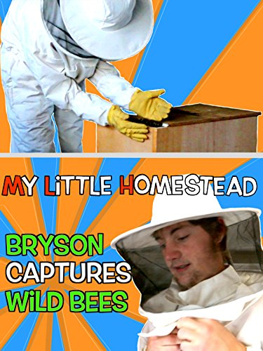 Bryson Captures Wild Bees & Harvests Honey For the 1st Time! [OV]