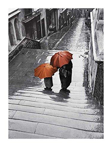 Papier 60 x 80 x 0,05 cm Gris Editions Braun W08048 Affiche